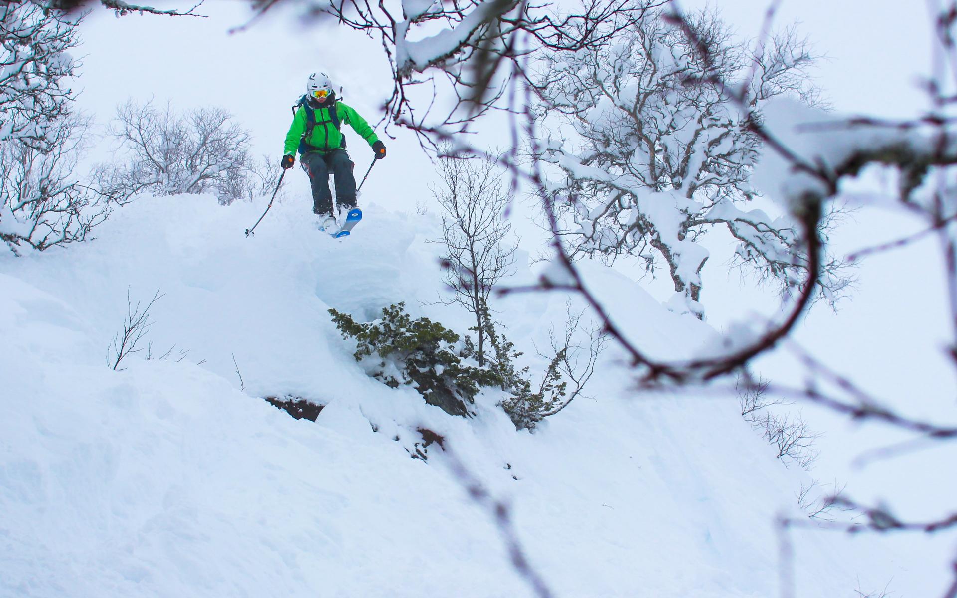 Friluftsliv / Ski og surf